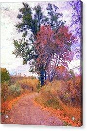 Acrylic Print featuring the digital art Autumn Melancholy by David King