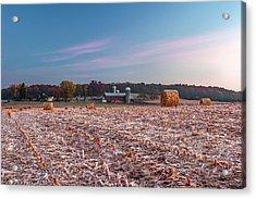 Autumn Memories Acrylic Print by Todd Klassy