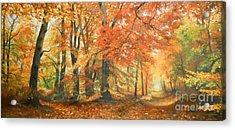 Autumn Mirage Acrylic Print by Sorin Apostolescu