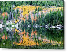 Autumn Mirror At Bear Lake Acrylic Print