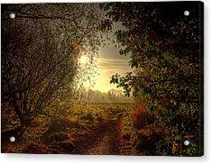 Autumn Mist Acrylic Print by Kim Shatwell-Irishphotographer