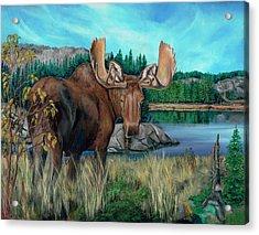Autumn Moose Acrylic Print