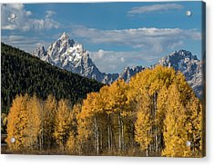 Autumn Morning Acrylic Print by Andrew Wells