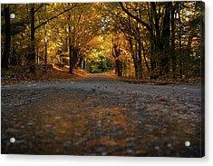 Autumn Mornings Acrylic Print by Sue OConnor