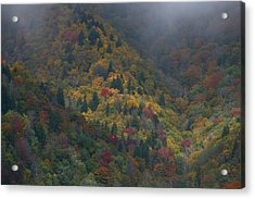 Autumn Mountains Acrylic Print by James Jones
