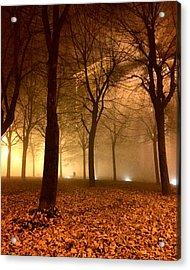 Autumn Acrylic Print by Niki Mastromonaco
