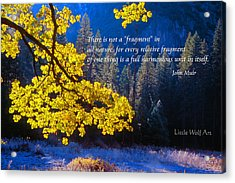 Autumn Oak Yosemite Poster Art Acrylic Print