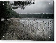 Autumn On Lake. Oleshnya, 2016. Acrylic Print