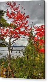 Acrylic Print featuring the photograph Autumn On Raquette Lake by David Patterson