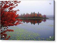 Autumn On The Bellamy Acrylic Print