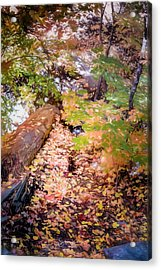 Autumn On The Mountain Acrylic Print