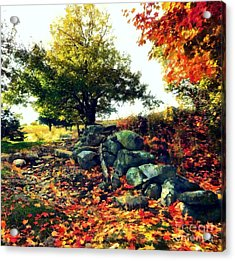 Acrylic Print featuring the painting Autumn Orchard by Janine Riley