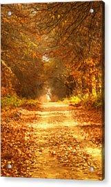 Autumn Paradisium Acrylic Print