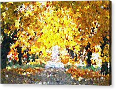 Autumn Path Acrylic Print by Don Phillips