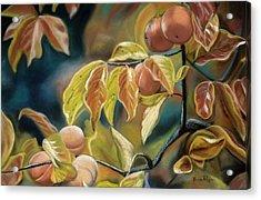 Autumn Peaches Acrylic Print by Brenda Williams