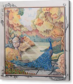 Autumn Peacock Acrylic Print by Joyce Hutchinson