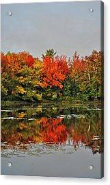 Acrylic Print featuring the photograph Autumn Portrait by Kathleen Sartoris