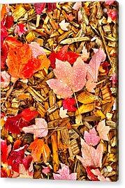 Autumn Potpourri Acrylic Print