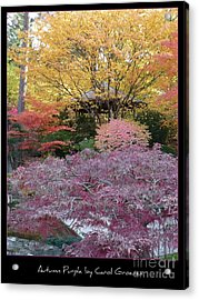 Autumn Purple Acrylic Print by Carol Groenen