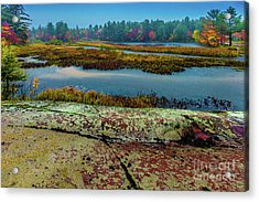 Autumn Rain 2 Acrylic Print