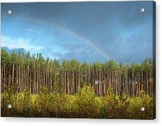 Autumn Rainbow. Sunychne, 2016. Acrylic Print