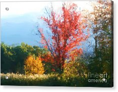 Autumn Red And Yellow Acrylic Print by Smilin Eyes  Treasures