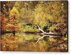 Autumn Reflection Acrylic Print by Cheryl Davis