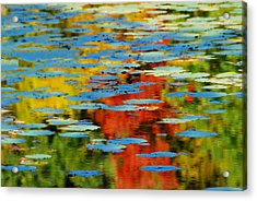 Acrylic Print featuring the photograph Autumn Lily Pads by Diana Angstadt