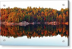Acrylic Print featuring the photograph   Autumn Reflections by Debbie Oppermann