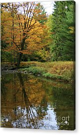 Autumn Reflections Acrylic Print by Debra Straub
