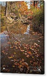 Autumn Reflections Acrylic Print by Iris Greenwell