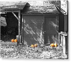 Autumn Rest Acrylic Print