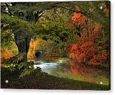 Acrylic Print featuring the photograph Autumn Reverie by Jessica Jenney