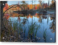 Autumn River 2015 Acrylic Print by Bill Wakeley