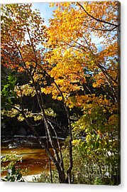 Autumn River Acrylic Print