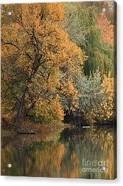 Autumn Riverbank Acrylic Print by Carol Groenen