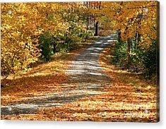 Autumn Road Acrylic Print by Debra Straub