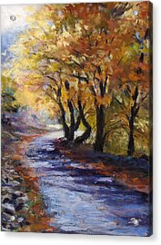 Autumn Road Home Acrylic Print by Susan Jenkins