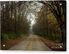 Autumn Road Acrylic Print by Inspired Arts