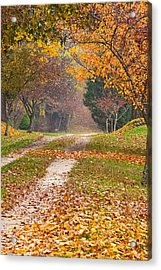 Autumn Road Acrylic Print by Stephen Sisk