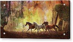 Autumn Run Acrylic Print
