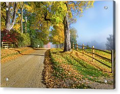 Autumn Rural Road Acrylic Print by Bill Wakeley