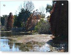 Acrylic Print featuring the photograph Autumn Serenity by Carol  Bradley