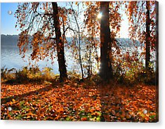 Acrylic Print featuring the photograph Autumn. by Sergey and Svetlana Nassyrov