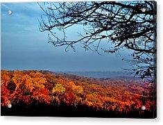 Autumn Shade Acrylic Print
