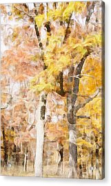 Autumn Acrylic Print by Art Spectrum