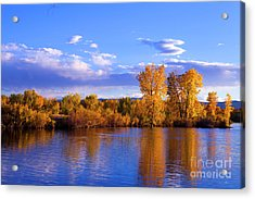 Autumn Shimmering Acrylic Print by Barbara Schultheis