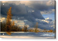 Acrylic Print featuring the photograph Autumn Skies  by Elfriede Fulda
