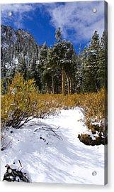 Autumn Snow Acrylic Print by Chris Brannen