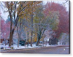 Autumn Snow Acrylic Print by James BO  Insogna